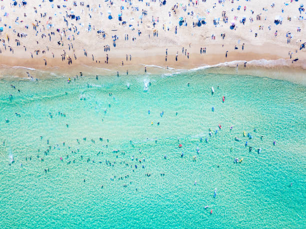 An aerial view of people at the beach An aerial view looking down at Bondi Beach in Sydney on a busy day with blue water australian culture stock pictures, royalty-free photos & images