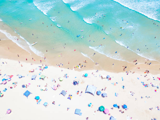 an aerial view of people sun baking at the beach at rainbow bay in coolangatta - queensland foto e immagini stock