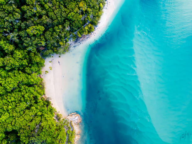 An aerial view of the beach with blue water Amazing blue water at the beach taken from above looking down. oceania stock pictures, royalty-free photos & images