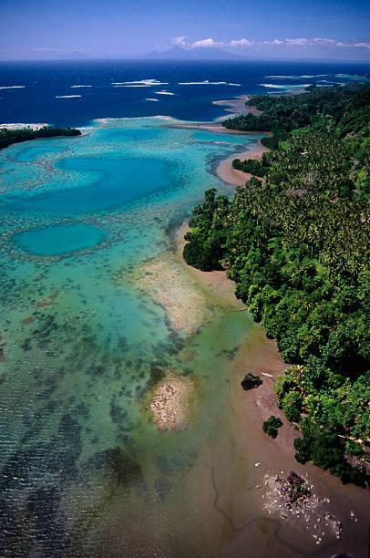 Coral coast – Foto