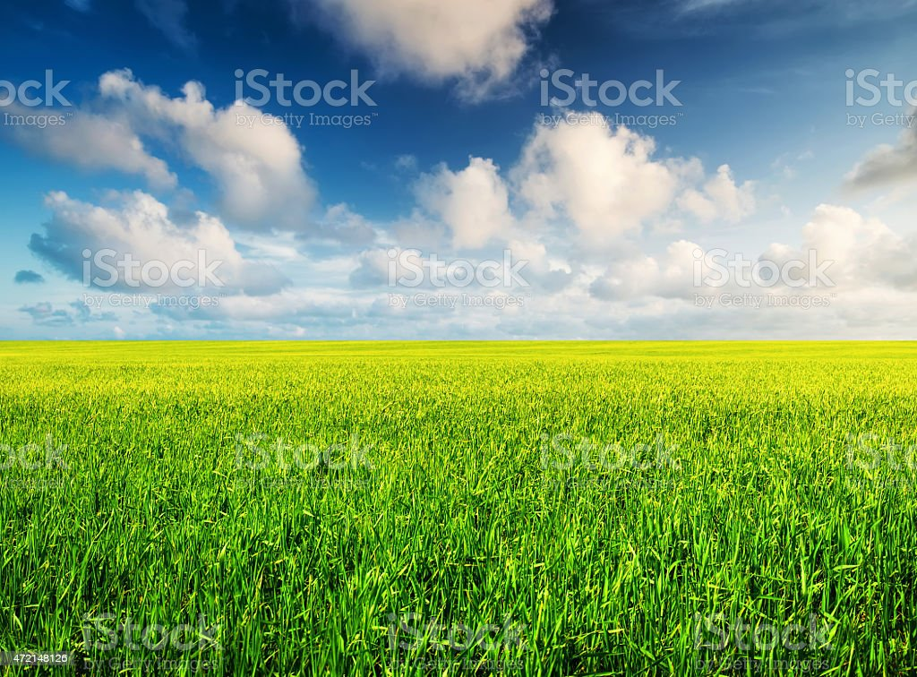 An agricultural landscape with the view of the sky stock photo