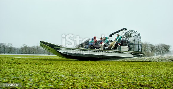 An Airboat Speeds through Floating Salvinia (Fern) in the Atchafalaya River Basin Swamp in Southern Louisiana Under an Overcast Sky