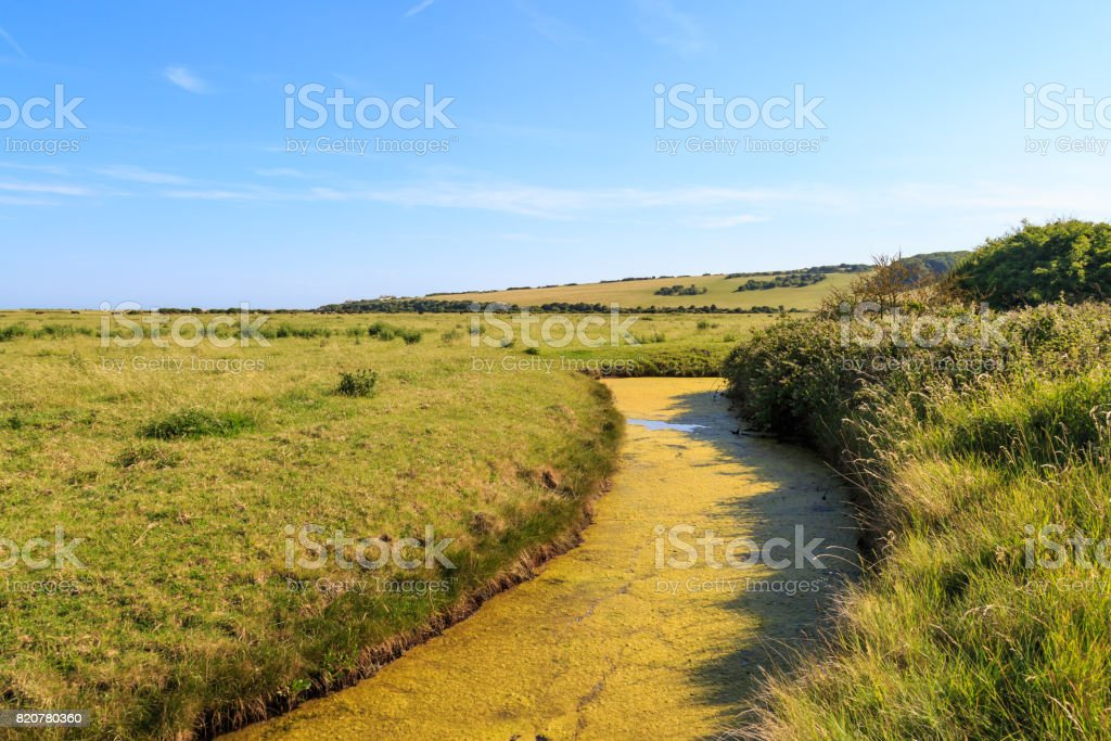 An Algal Bloom on a River stock photo