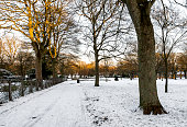 An alley covered by snow in Victoria Park early morning, Aberdeen, Scotland. Photo taken in the morning after unusual snowfall in December 2017.