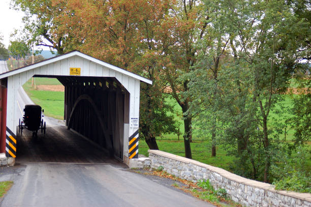 An Amish buggy goes through a covered bridge stock photo