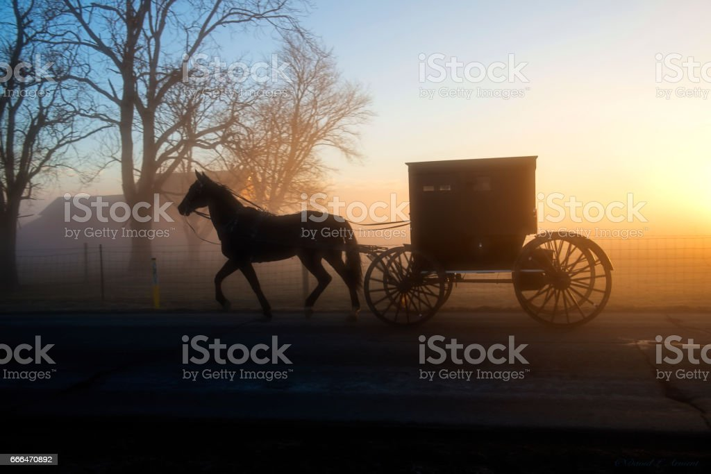 An Amish Buggy in Profile and in Silhouette in the Morning Fog stock photo