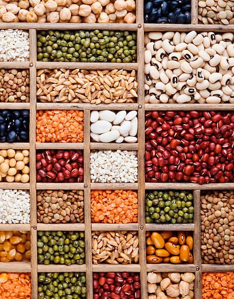 composizione di cereali, semi e legumi - fagioli cannellini foto e immagini stock