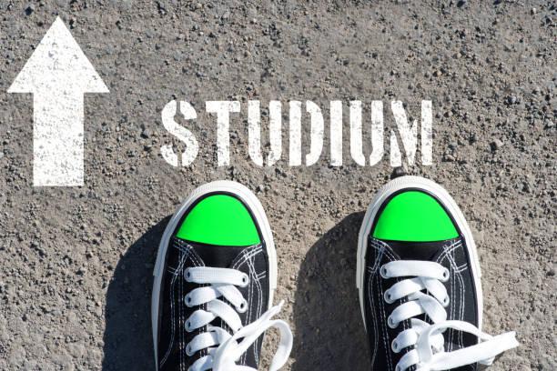 an arrow points towards study - esame maturità foto e immagini stock