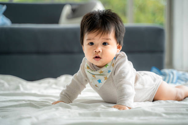 An Asian baby is crawling along the floor on a room covered by a quilt. stock photo