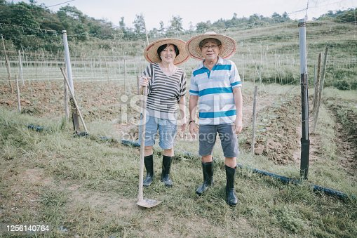 an asian chinese senior couple working in the farm for their retirement time spend at their back yard of their house