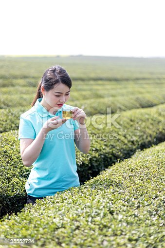 An oriental girl at the tea plantation
