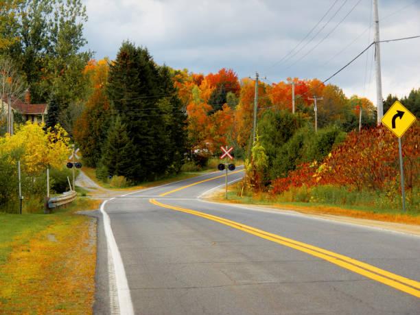 An autumn road. stock photo