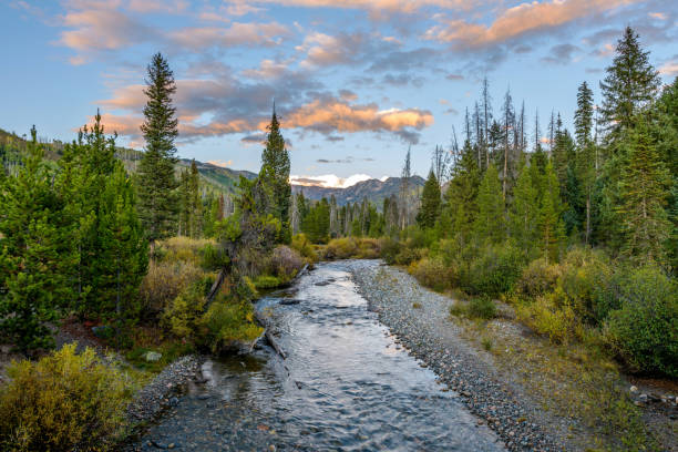 An autumn sunset view of Middle Fork Elk River flowing through Rocky Mountains in Routt National Forest, near Steamboat Springs, Colorado, USA. Sunset Mountain Creek steamboat springs stock pictures, royalty-free photos & images