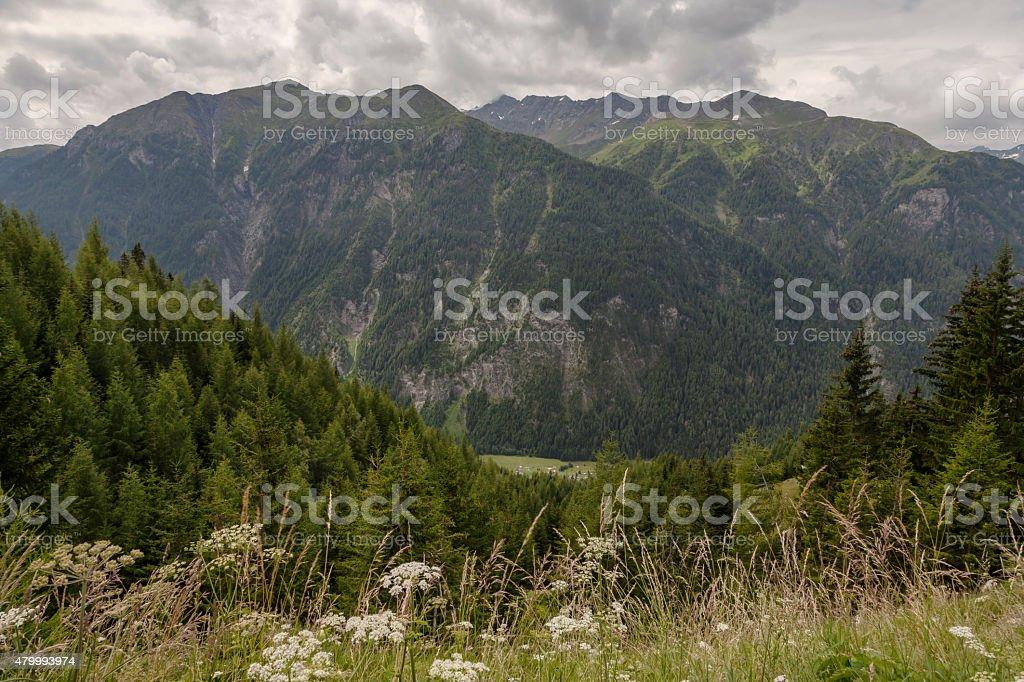 An der GroÃssglockner - HochalpenstrassŸe stock photo
