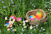 An easter nest with colorful easter eggs in a blooming spring meadow