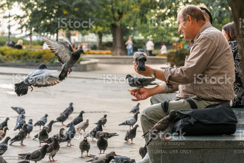 An elderly caucasian male sitting on a stone bench in a city park in Budapest Hungary to feed pigeon birds. stock photo