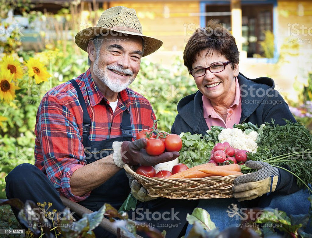 An elderly couple showing off their gardening successes royalty-free stock photo