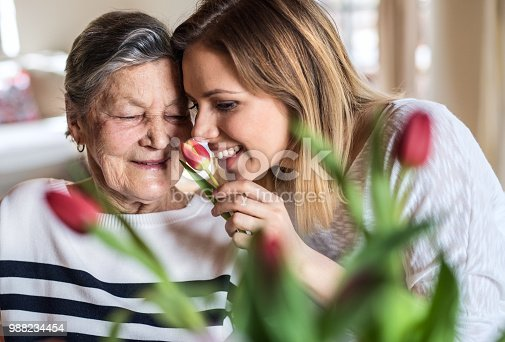 Portrait of an elderly grandmother with an adult granddaughter at home, smelling flowers.