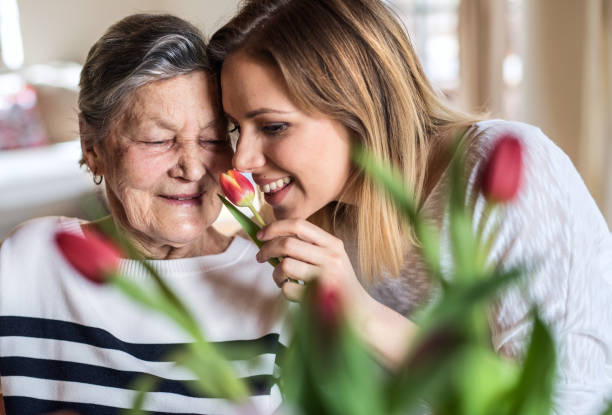 An elderly grandmother with an adult granddaughter at home, smelling flowers. stock photo