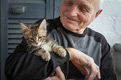 istock An elderly man holds a Maine Coon kitten and smiles to him, selective focus. 1136863933