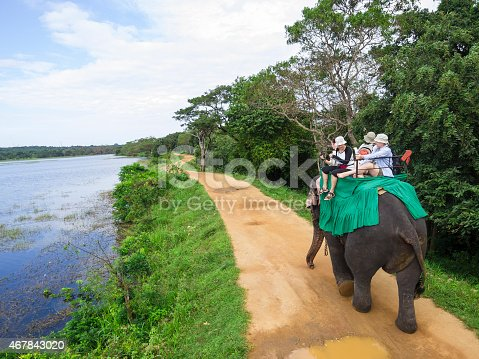istock An elephant carrying a group of people down a path 467843020