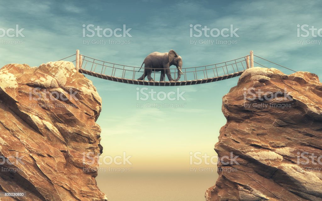 An elephant goes on a wooden bridge stock photo