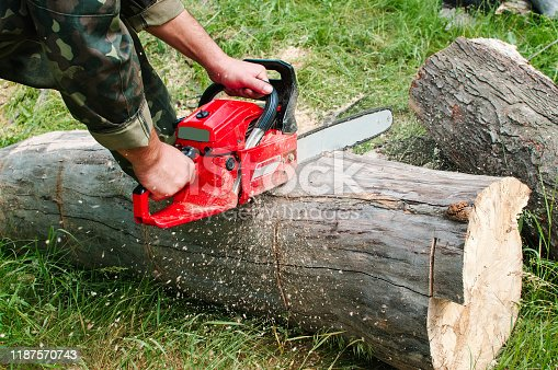 An employee with a chainsaw cuts a log. Worker in wood.