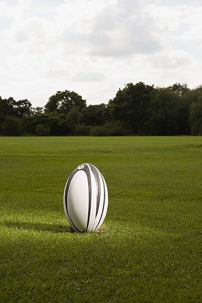 an illuminated rugby ball on a rugby pitch - rugby ball stock photos and pictures