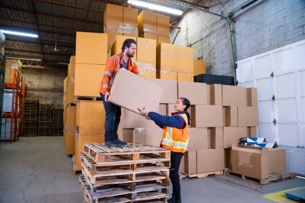 An industrial warehouse workplace safety topic.  An employee standing unsafely on a stack of pallets to reach higher placed boxes. stock photo