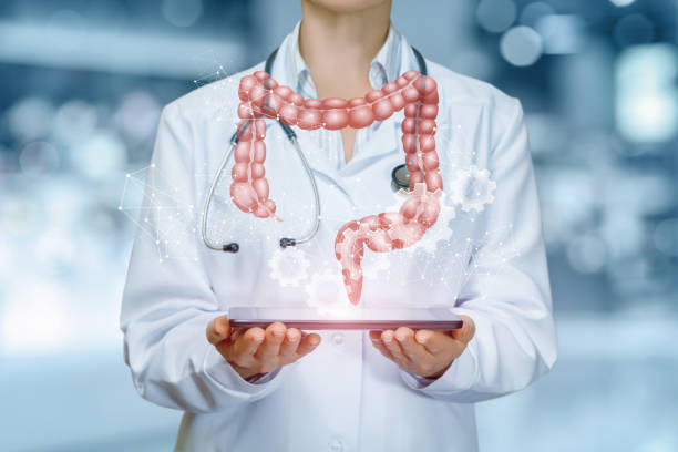 An intestines model is hanging above a device in doctor's hands . stock photo