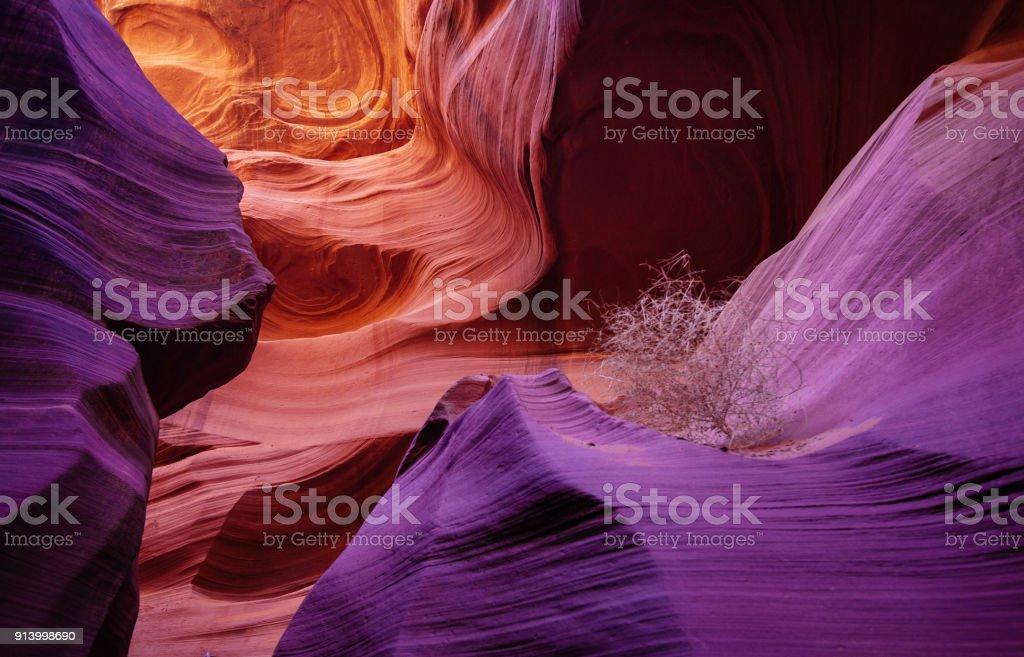 An Intimate Scene at Antelope Canyon (tumbleweed) stock photo
