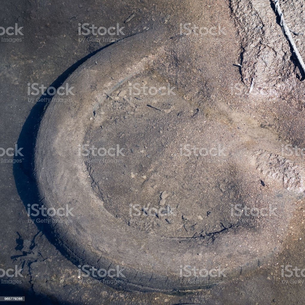 An old, abandoned, long forgotten buried tire. - Royalty-free Backgrounds Stock Photo