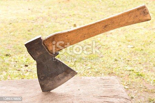 An old axe in an oak log. Close up.