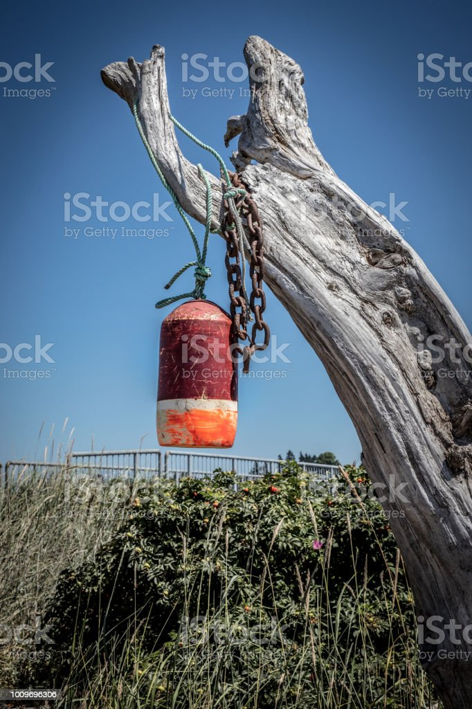 An old bouy hand from a rusty chain on a weathered log on Jetty Island Washington stock photo
