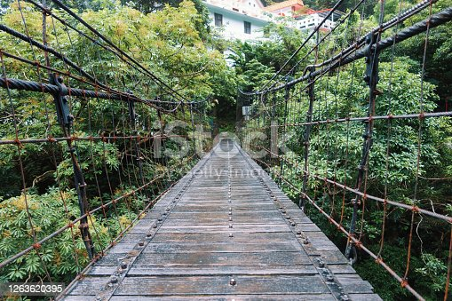 istock An old bridge in a green forest 1263620395