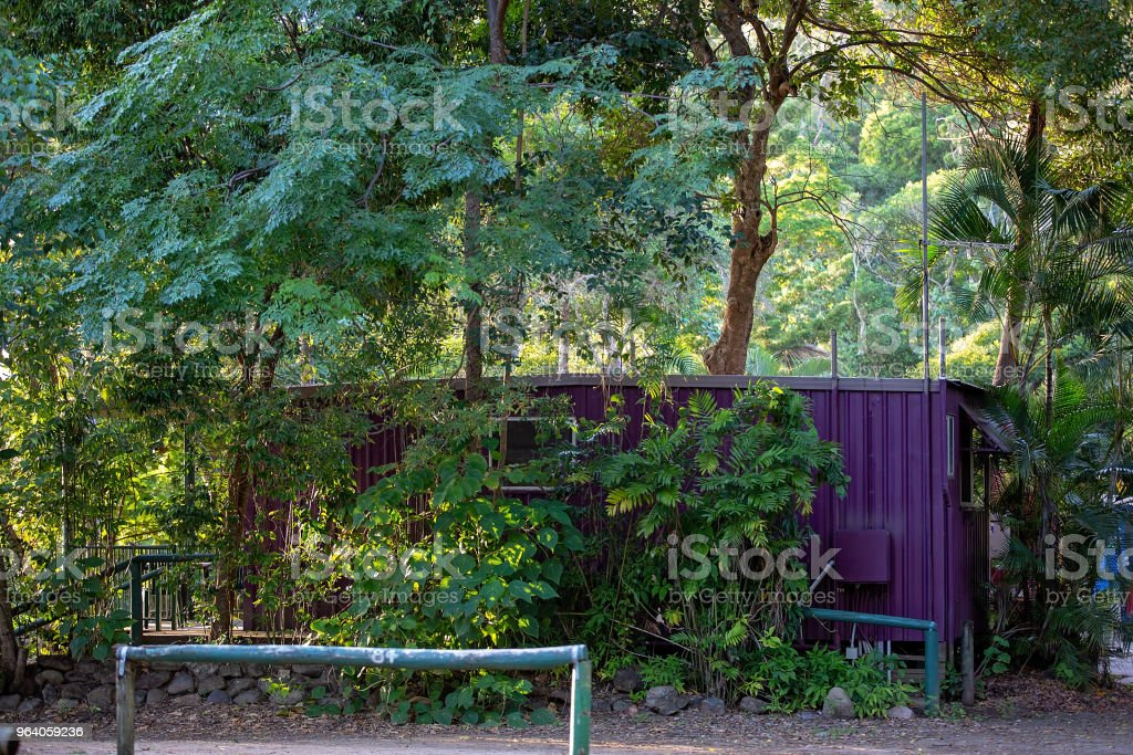 An old container painted purple and made into a holiday cabin in the bush at Cape Hillsborough in Australia - Royalty-free Architecture Stock Photo