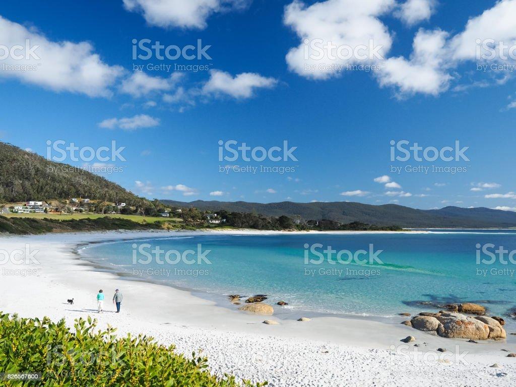 Ein altes Ehepaar ging ihr Hund auf dem goldenen Strand im Sommer.  (Bicheno, Tasmina, Australien) – Foto