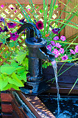 An old fashion hand pump turned into a water fountain.