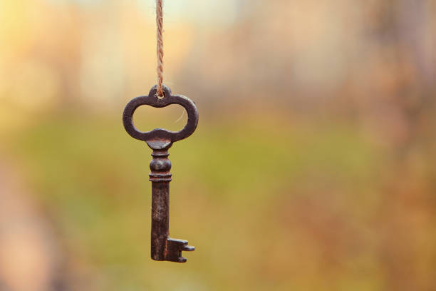 An old key hangs on a tree branch, against the background of a forest road. Blurred background, space for text stock photo