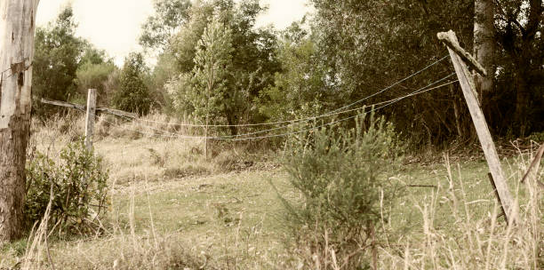 an old laundry line in a small yard stock photo