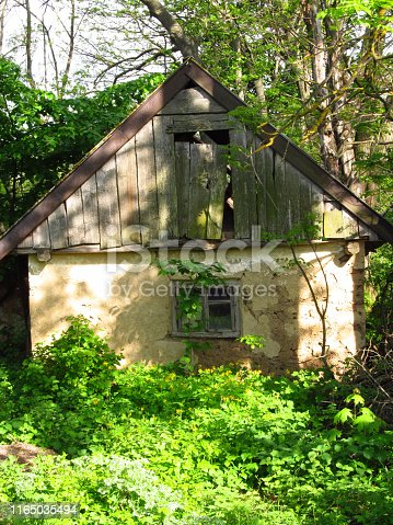 An old ruined clay house, a wooden facade in the village of Zaluzhya, Ukraine. Old walls. Bushes and trees in the yard.