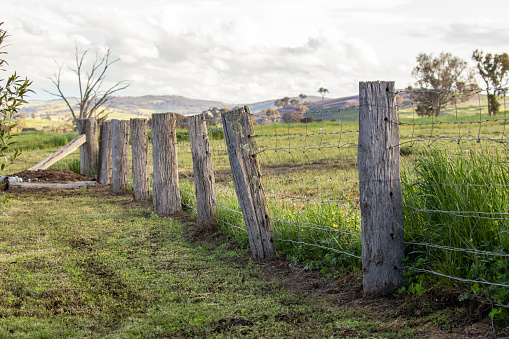 Commonly found in old farm houses are these kind of fences. Put up many years ago and left to rot, they still perform their task