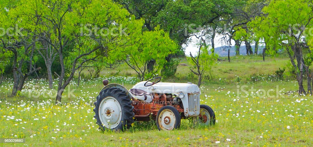 An old tractor in a field with wildflowers stock photo