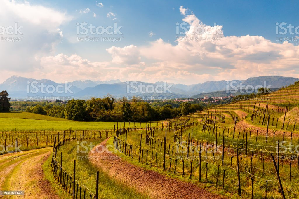 An old village in the italian countryside 免版稅 stock photo