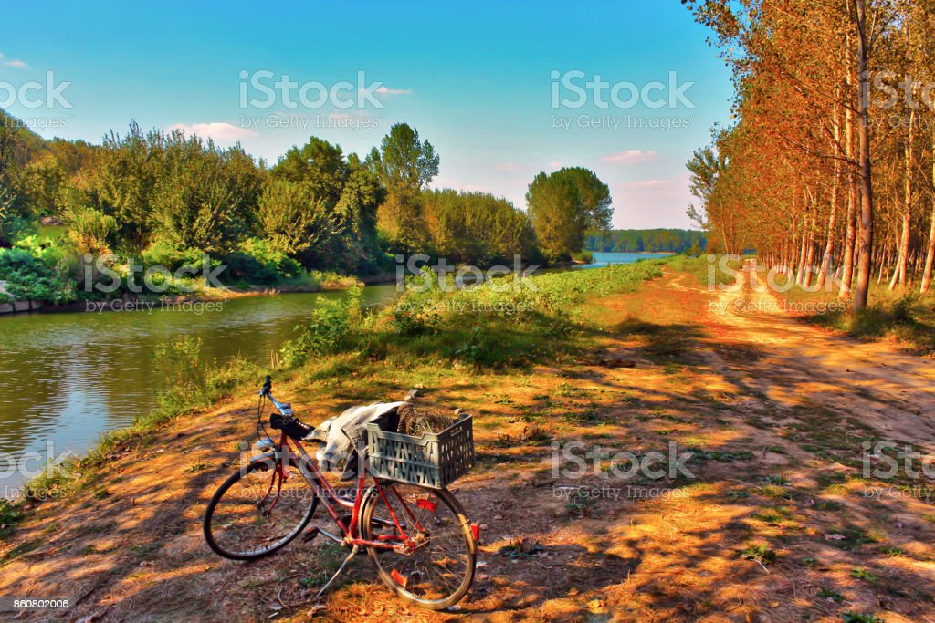 An old wheel on a dirt road to the river landscape stock photo