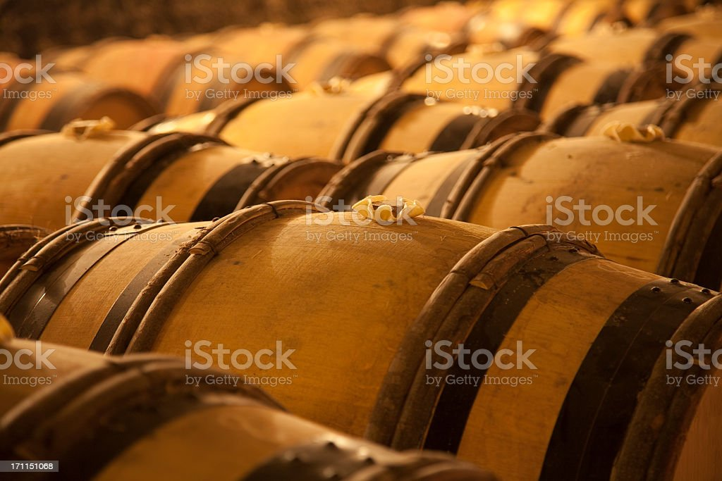 An old wine cellar full of barrels stock photo