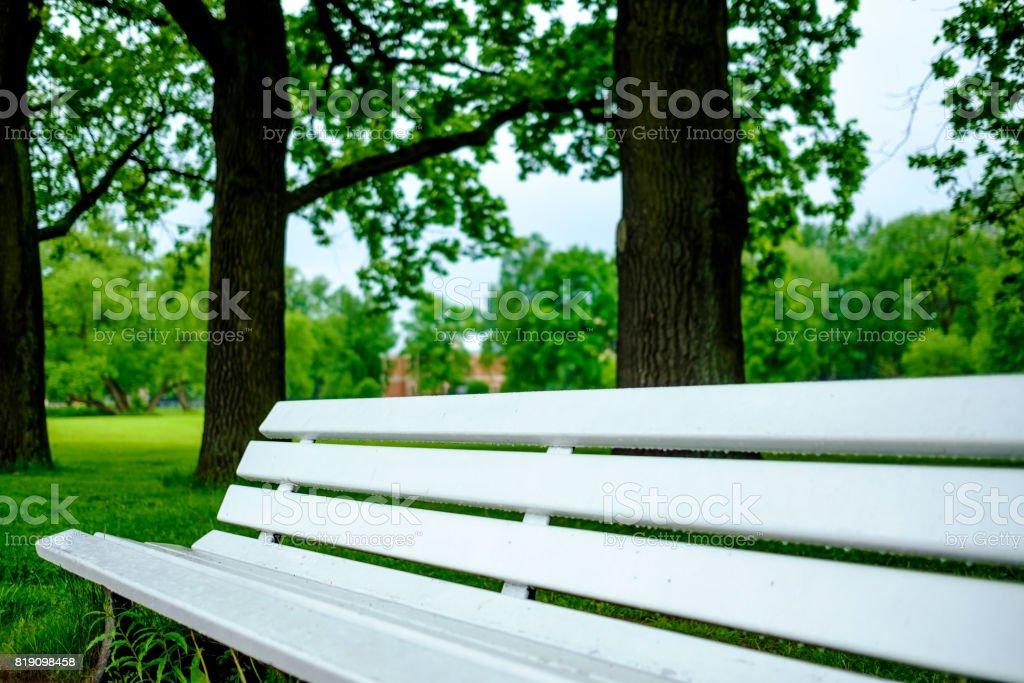 Eine Alte Weiße Holzbank Im Park Vor Dem Hintergrund Einer Verschwommenen  Bäume. Lizenzfreies Stock