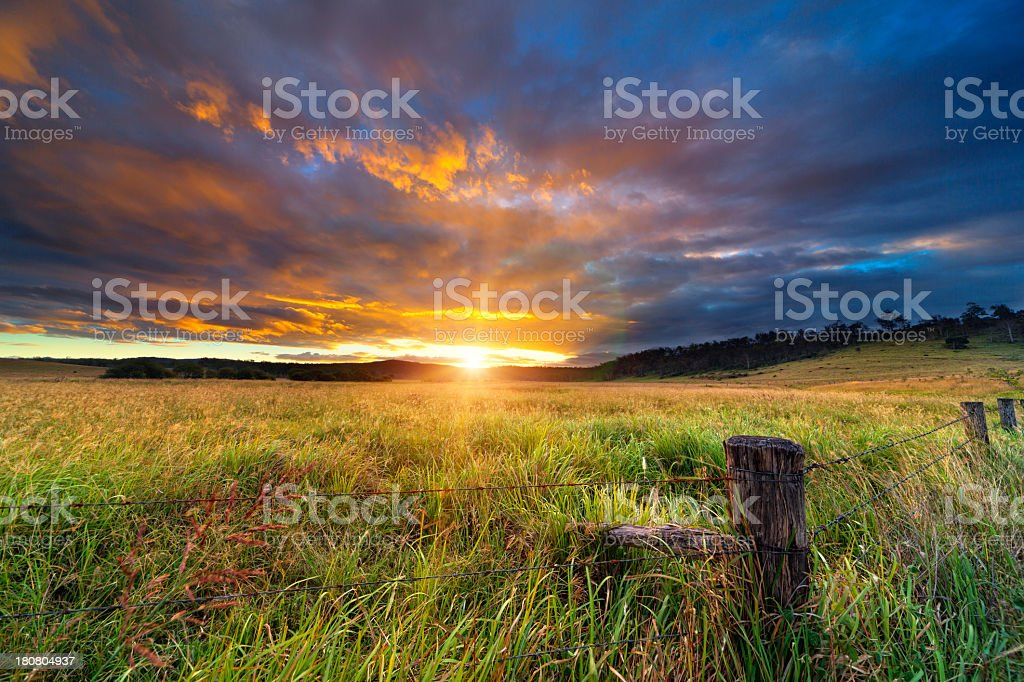 An open, grassy field with the sun setting in the back stock photo
