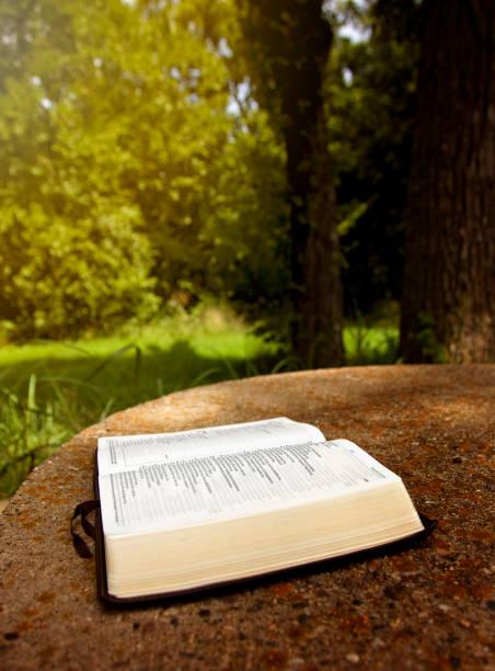 eine geöffnete bibel auf einem tisch in einem grünen garten - psalm stock-fotos und bilder