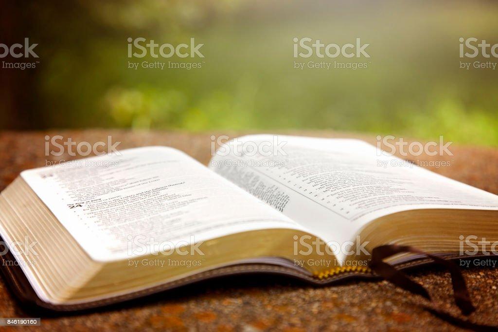 Fotografía De Una Biblia Abierta Sobre Una Mesa En Un Jardín Verde Y